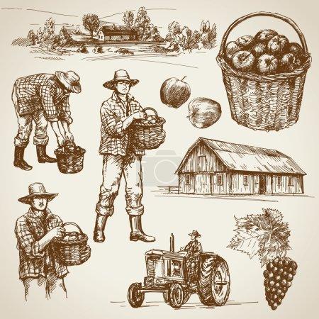 Illustration pour Terres agricoles, récolte à la ferme - image libre de droit