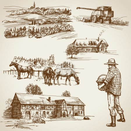 Farmland, harvest on the farm