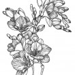 Vector Black and white sketch of Beautiful spring ...