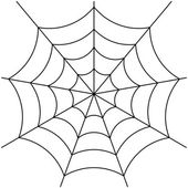 Image of spider web isolated on white vector