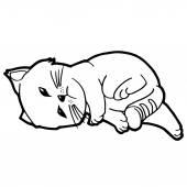 Kreslená kočka zbarvení stránky pro dítě izolovaných na bílém