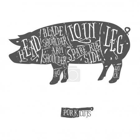 American cuts of pork, vintage typographic hand-drawn butcher cuts scheme