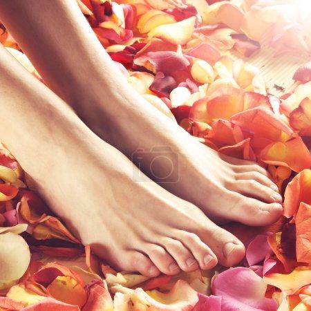 Photo pour Belles jambes féminines sur fond de spa . - image libre de droit