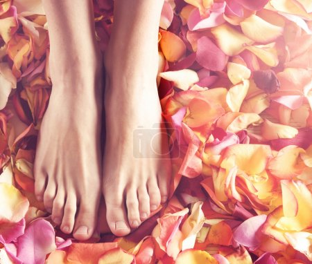Beautiful legs with flower petals