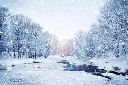 Photo for Winter nature landscape. Snowy forest, tree and a sunset. - Royalty Free Image