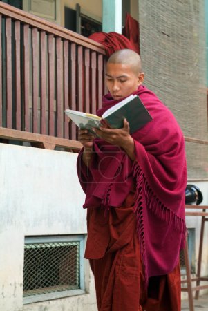 Young monk reading a book at Mahagandayon Monastery on Mandalay,