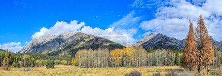 Photo pour Canyon Mistaya, parc national Jasper, Alberta, Canada - image libre de droit