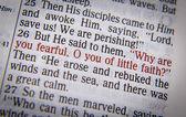 Bible text - proč se tak bojí