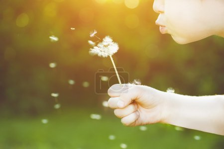 Close-up portrait of child blowing white dandelion. Background t