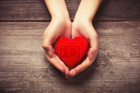 Photo for Female hands giving red heart - Royalty Free Image
