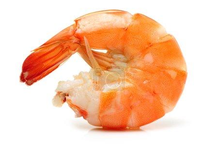 Photo pour Crevettes cuites sur fond blanc - image libre de droit