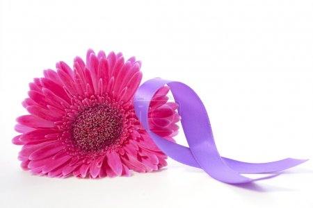 Photo pour International Womens Day Pink Gerbera with symbolic purple ribbon on white wood table. - image libre de droit