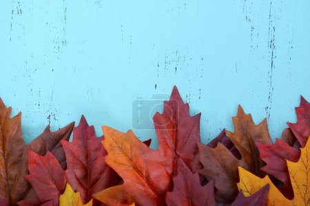 Photo pour Autumn Fall rustic background on aqua blue vintage distressed wood with autumn leaves and decorations. - image libre de droit