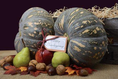 Happy Thanksgiving Pumpkin in Rustic Setting.