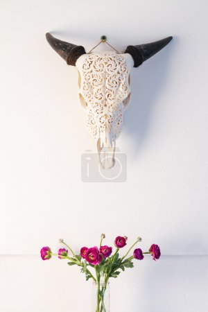 Decoration animal's skull