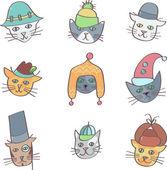Kočky v kloboucích