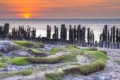 Árapály sós Watt-tenger