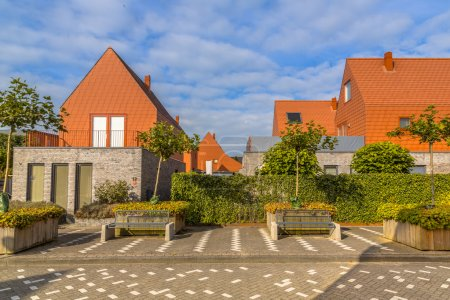 Modern houses with conspicious red slate roof tiles