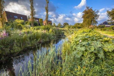 Photo pour Canal d'évacuation des eaux de pluie excessif avec végétation naturelle sur les rives servant de connexion écologique dans la zone urbaine de Soest, Pays-Bas - image libre de droit
