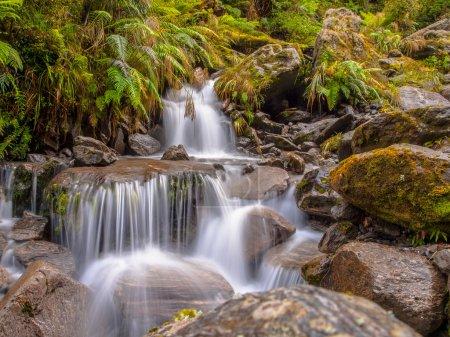 Photo pour Chute d'eau de la forêt tropicale image longue exposition dans la forêt tropicale luxuriante - image libre de droit