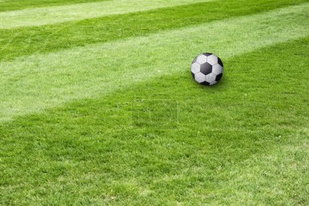 Soccer ball on grass field background