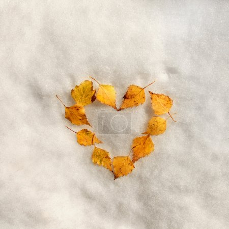 Autumn leaves heart sign on the snow
