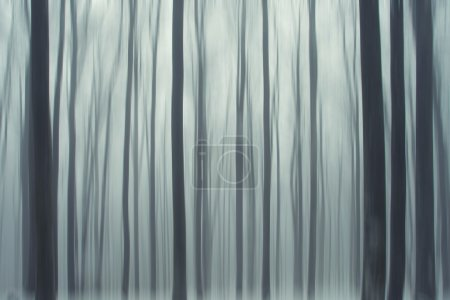 Abstract winter forest trees