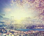 Bridge over Bosporus at spring sunset , Istanbul , Turkey