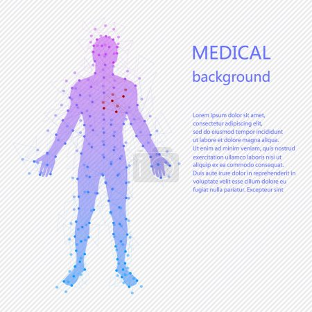 Illustration for Medical background. Abstract model of man with points and lines. Vector background. Human anatomy - Royalty Free Image