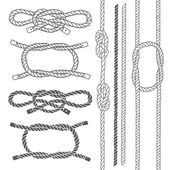 Set of marine rope knots Vector elements on a white background