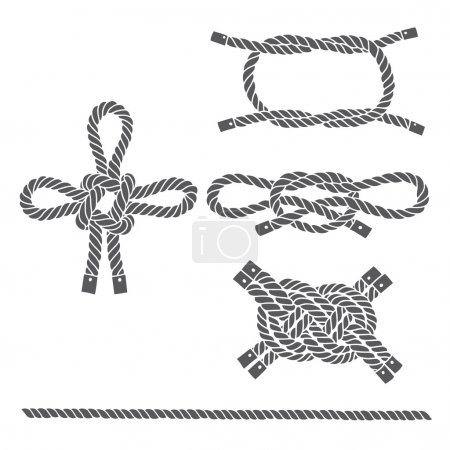 Illustration for Set of marine rope, knots. Vector elements on white - Royalty Free Image