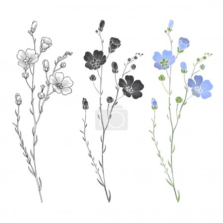 Illustration for Floral seamless background of flax plants. Monochrome vector background - Royalty Free Image