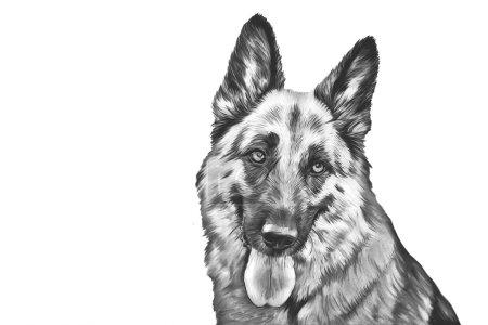 Photo pour Dessin du chien berger allemand - image libre de droit
