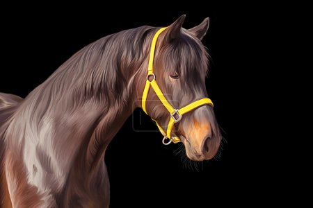 Drawing of a horse, portrait, on a black  background, Hand-drawn