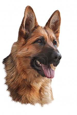 Photo pour Dessin portrait de chien peinture à l'huile sur un fond blanc - image libre de droit