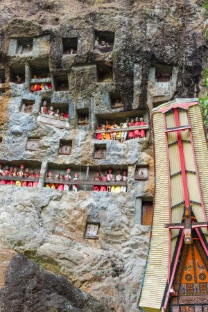 Photo for Lemo (Tana Toraja, South Sulawesi, Indonesia), famous burial site with coffins placed in caves carved into the rock, guarded by balconies of dressed wooden statues, images of the dead persons (called tau tau in local language). - Royalty Free Image
