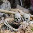 Human bones and skulls with cigarette offerings in...