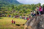 Skupina lidí Toraja na rýžové pole