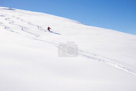 Freeriding on fresh powder snow