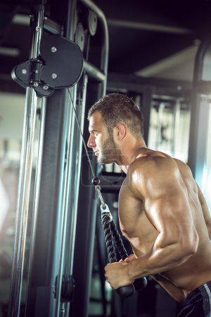 Triceps rope pushdown