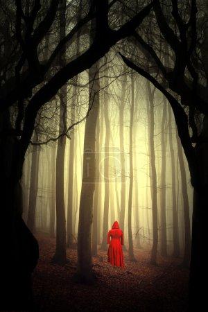 Photo pour Forêt enchantée. Femme dans le rouge. - image libre de droit