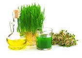 Weizengras-Saft mit Auswuchs Weizen und Weizenkeim-Öl
