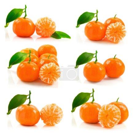 Photo pour La vue du groupe des mûr mandarine avec feuille verte isolé sur fond blanc, macro - image libre de droit