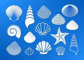 White sea shells and starfish icons
