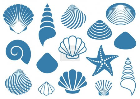 Illustration for Set of various blue sea shells and starfish - Royalty Free Image