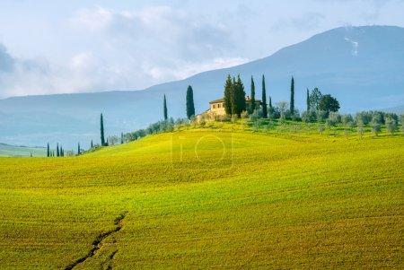 Landscape of Val d'Orcia province