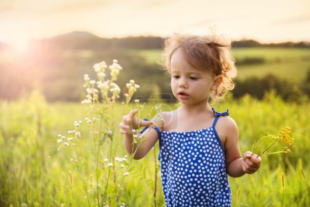 Photo for Cute little girl is playing in summer meadow - Royalty Free Image