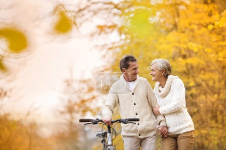 Senior couple enjoying walk with bicycle