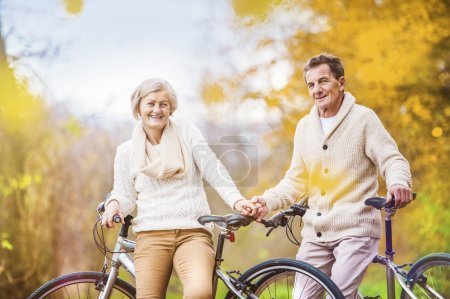 Photo pour Active seniors on bikes in autumn nature - image libre de droit