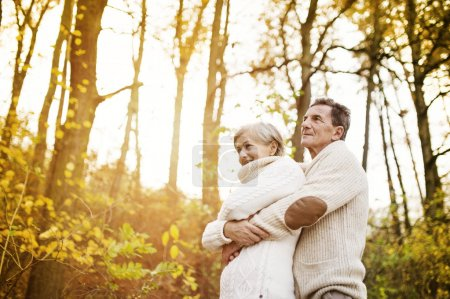 Senior couple hugging in autumn forest